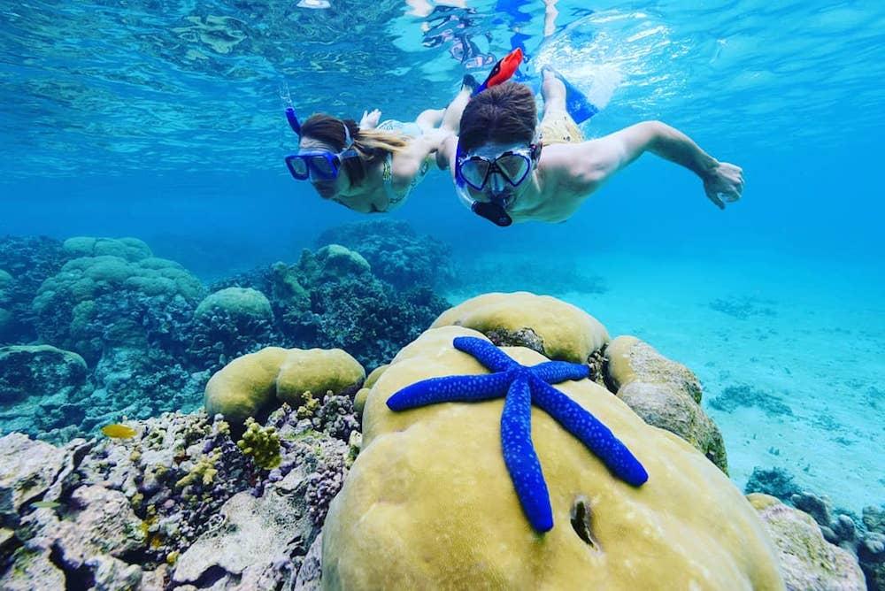 Snorkelling in the Solomon Islands